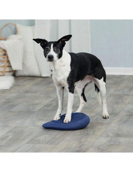 Trixie Germany Agility Balance Cushion Dark Blue