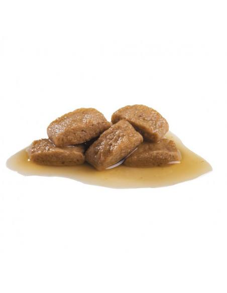Royal Canin Maxi Adult Wet Gravy Pouches (10 pouches ) 1.4kg