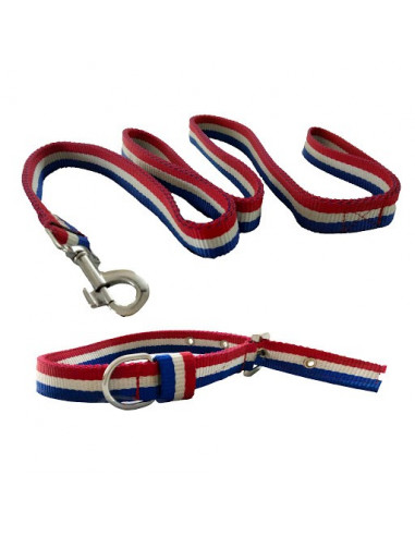 Pawzone Collar With Leash Set For Dogs
