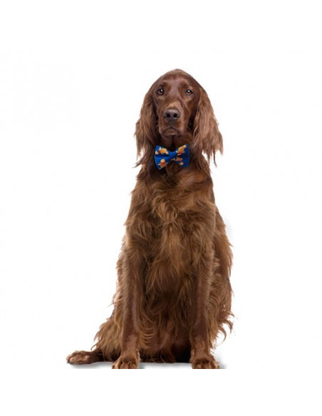 Pawzone stylish Blue Bow for dogs