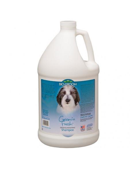 Groom 'N Fresh odor eliminating Shampoo Gallon