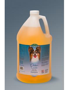 Protein Lanolin Moisturising Shampoo Gallon
