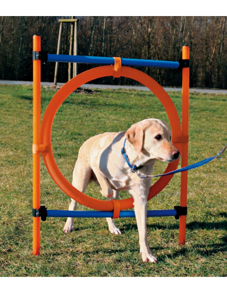Trixie Dog Activity Agility Ring (Orange/Blue)