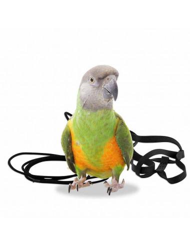 Pawzone Pet Bird Harness For Small Birds & Cockatiel Birds