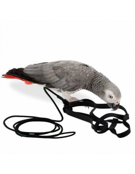 Pawzone Bigger Bird Harness