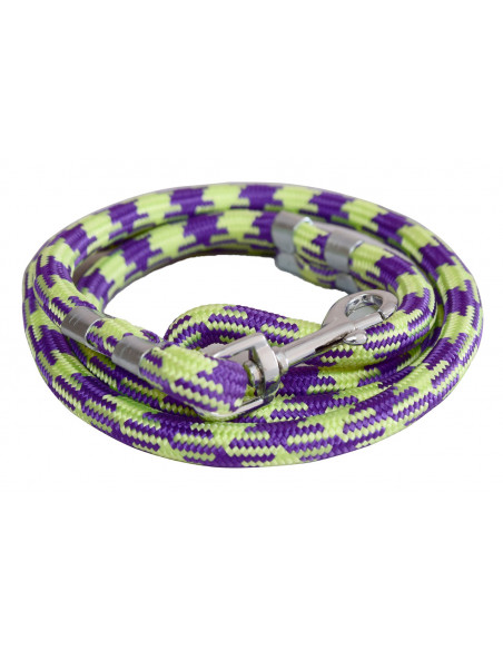 Pawzone Green Leash for Big Dogs