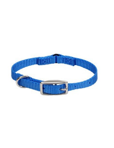 Pawzone Blue Collar for Puppys