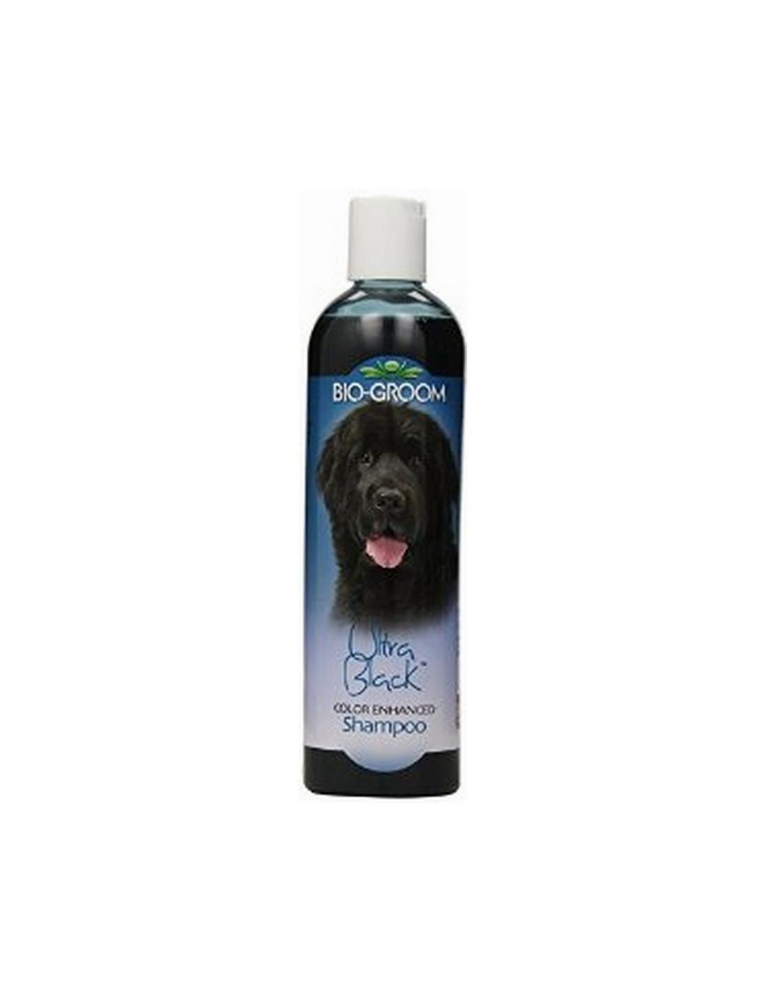 Black Dog Ml Price
