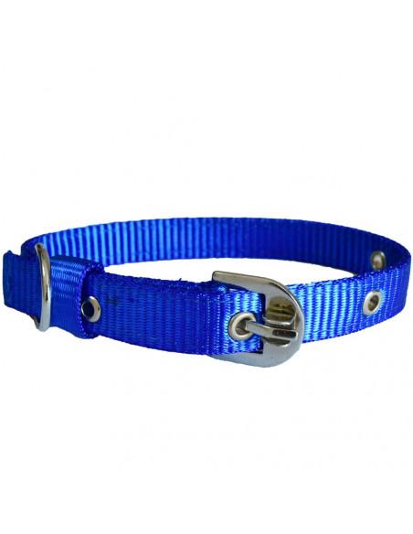 Pawzone Smooth & Sturdy  Blue  Collar