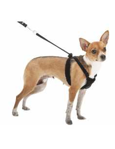YUP Non Pull Mesh Harness Black for Dogs
