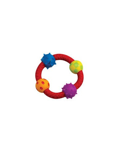 Petstages Multi Texture Chew Ring Dog Toy