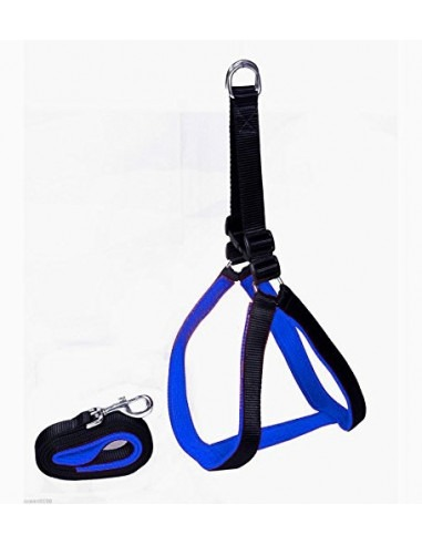 High Quality Pawzone Nylon with Blue Padding Dog Harness .75 inch Black - Small (small)