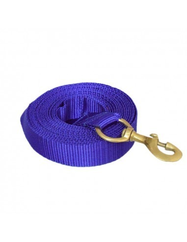Pawzone blueTraining leash with Brass hook