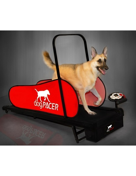 Pacer dog Tread Mill For Dogs