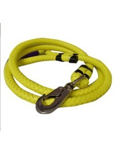 Pawzone Heavy dog rope With silver Hook