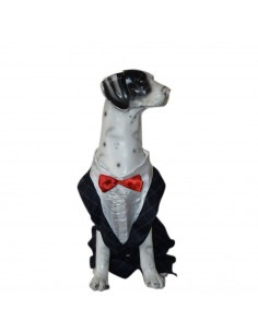 Pawzone Party Wear Black Suit for Dogs