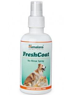 Himalaya Digyton Plus  Liquid-100 ml ( Pack of 2)
