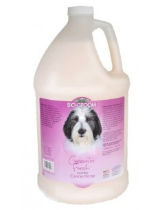 Biogroom, Groom n Fresh Scented Crème Rinse Conditioner Gallon