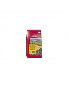 Versele-Laga-Sunflowerseeds Striped-0.60Gm