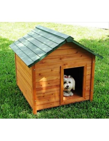 Wodden Dog House