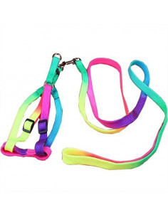 Pawzone Mutli colour body harness Medium