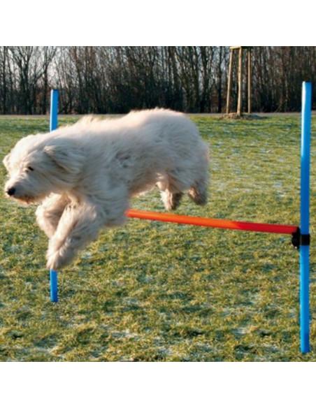 Trixie Dog Activity Agility Hurdle (Blue/Orange)