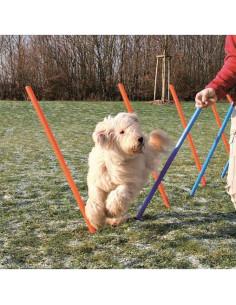 Trixie Dog Agility Slalom