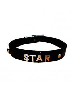 Pawzone Gold Studded Customized Dog Collar