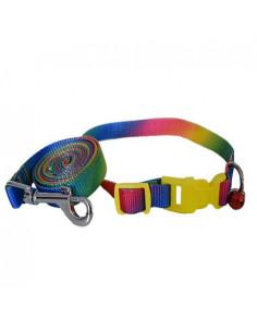 Pawzone Multi Colour Collar With Leash