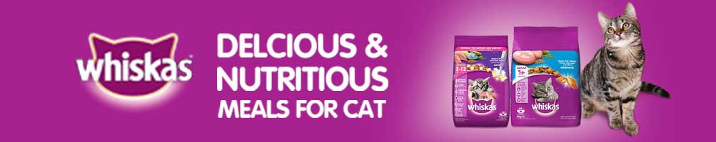 Buy Best Dry Cat Food online at best prices in India