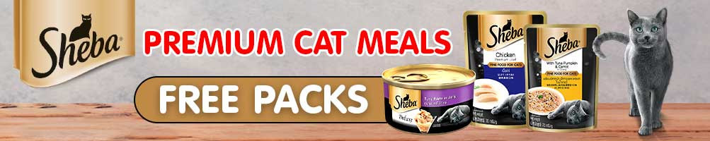 Buy Cat Food Pouches Online at best prices in India
