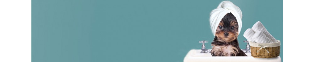 Buy Dog Grooming Kit Online India|Dog Grooming Tools & Equipments