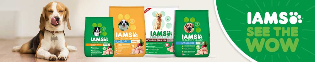 Dog Food, dog food online at lowest price in India.Compare now