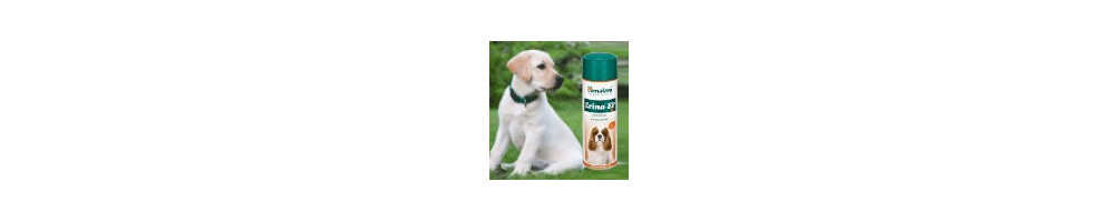 Buy Best Dog Soaps & Powders Online India at lowest prices