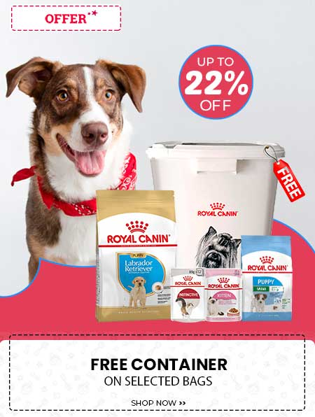RC FREE CONTAINER 22% OFF