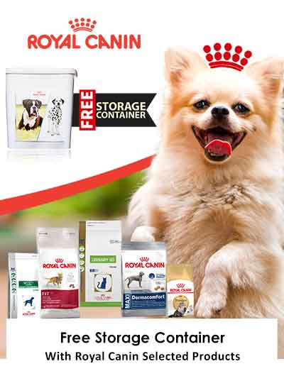 free container on royal canin