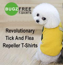 Buy pet food Online Shop for Dog, Cat & Bird Supplies